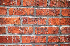 Red Bricks Wall. Texture background Stock Images