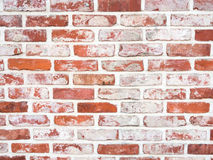 Red brickwall Stock Photos