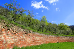 Red brickwork wall in singening terraces Royalty Free Stock Photos