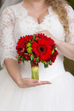 Red bridal bouquet in the hands of. Red  bridal bouquet whith camomile in her hands Stock Photography