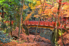 Red Bridge and Autumn Colors  in Nara, Japan Royalty Free Stock Photography