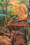Red Bridge and Autumn Colors  in Nara, Japan Royalty Free Stock Images