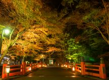 Red bridge crossing a stream with light up of autumn tree Stock Images