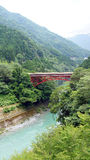 Red bridge and green river in Iya valley in Japan Stock Photo