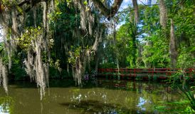 Red Bridge over water, with moss covered trees. Charleston, SC. stock image