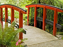 Red bridge in japanese garden. Bridge with a red handrails amidst a lush greenery ina japanese garden Royalty Free Stock Images
