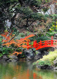 Red bridge in Japanese garden Royalty Free Stock Images