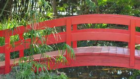 Red Bridge 4k stock footage