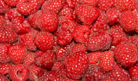 Red bright raspberries- great as background. Light sweet tasty Red raspberries sold in the market on a sunny summer day- dark shades Stock Photo