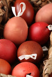 Red and brown Easter egg shells Stock Photography