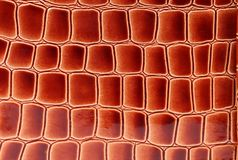 Red brown leather close up. Stock Image