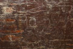 A red brown old shabby wooden board with cracks and white spots of paint. rough surface texture. Red brown old shabby wooden board with cracks and white spots of stock images