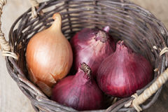Red and brown onions in a basket on a wooden table Stock Photos