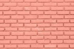 Red or brown wall of Cement Block Stock Images
