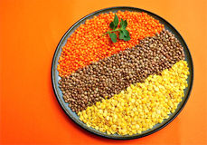 Red, Brown and Yellow Lentils. Pattern made of red, brown and yellow lentils decorated with oregano on orange background Stock Photos