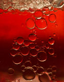 Red Bubbles. Abstract macro shot of rising bubbles on a gradiated red background Royalty Free Stock Photography