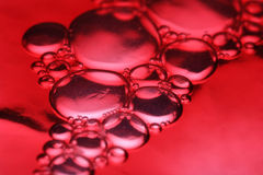 Red bubbles macro Stock Photos
