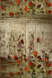Red buds on grunge wood background with copy space Stock Photography
