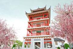 Red Building and Sakura Artificial Flowers Stock Photo