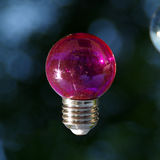 Red bulb. Red vitreous bulb on dark background Stock Image