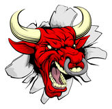 Red bull breakthrough. A red dragon sports mascot or character breaking out of the background or wall Stock Photos