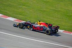 Red Bull jest w polowaniu przy 2017 kanadyjczykiem Obraz Stock