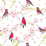 Red bullfinches on the magnolia tree vector seamless print Royalty Free Stock Photos