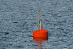 The red buoy. Stock Photo