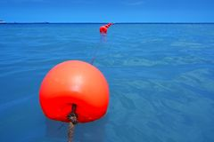 Red buoy row floating blue sea with rope closeup Royalty Free Stock Image