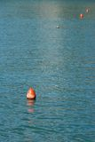 Red Buoy in Water Royalty Free Stock Image