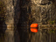 A red buoy in the water Royalty Free Stock Image