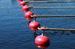 Red buoys Stock Images
