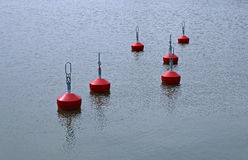 Red buoys in the lake Royalty Free Stock Photo