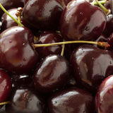 Red-burgundy cherry Stock Photography