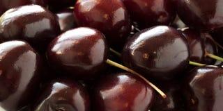 Red-burgundy cherry. Ripe delicious burgundy cherry, many berries Stock Image
