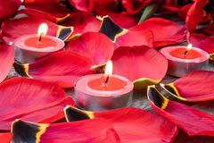 Red, burning candles near the red tulip petals. Fallen tulip petals. On the table stock images