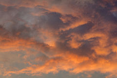 Red burning clouds in the sky Royalty Free Stock Photography