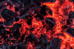 Red burning coals Stock Photography