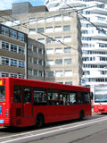 Red bus and tram line. In London Stock Photos