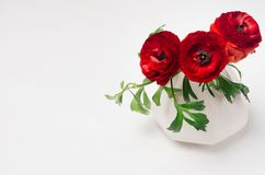 Red buttercup flowers in elegance vase on soft white wooden table. Elegant decor for modern interior. stock photos