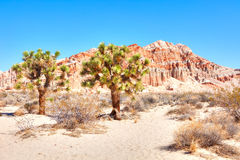 Red Buttes Royalty Free Stock Photos