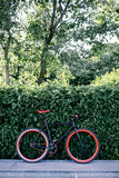 Red bycicle parked near bushes in park Royalty Free Stock Photo