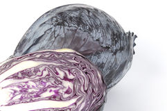 Red cabbage. Close up of a cabbage red cabbage on a white background stock photography