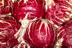 Free Red Cabbage Royalty Free Stock Photos - 67773588