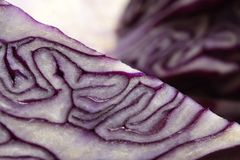 Red cabbage. Closeup of a cut red cabbage Stock Photos