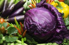 Red Cabbage. In the annual exhibition of agricultural farmers Royalty Free Stock Photo