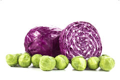Red Cabbage and Brussel Sprouts on White Stock Photo