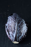Red cabbage on dark background Stock Image