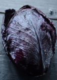 Red cabbage on dark background Royalty Free Stock Photos