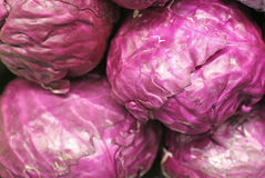 Red cabbage. Displayed at a food store Royalty Free Stock Images